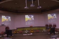 Dr.V Ramamurti Faculty Fellow Program
