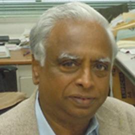 Prof. V Ramamurthy