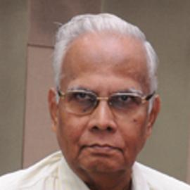 Mr. S Srinivasan
